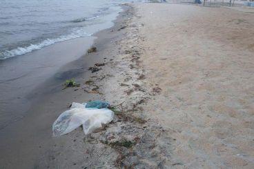 Danau Toba Bersih Karena Aku, Kamu dan Kita!