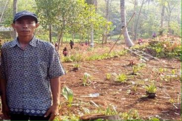 #SaveAmaryllis Koin Untuk Kebun Bunga