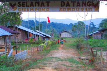 Buku Untuk Papua #Hardolnas
