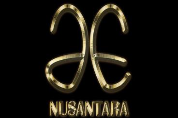 Jelajah Elok Nusantara