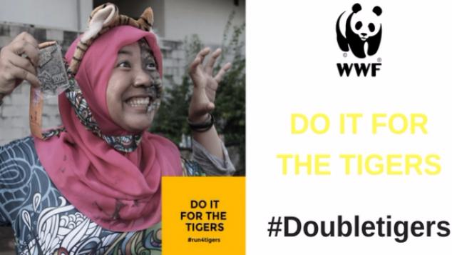 #DoubleTigers - Lari 42 KM untuk Harimau Sumatera