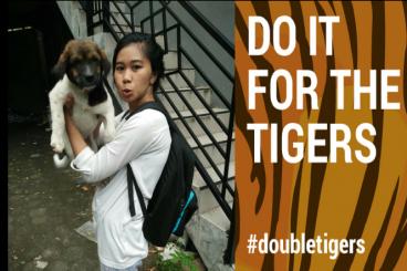 Donasimu untuk semesta. Save Tigers!