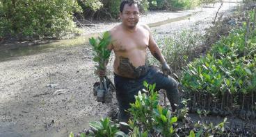 bantu wibi bangun sekolah alam mangrove