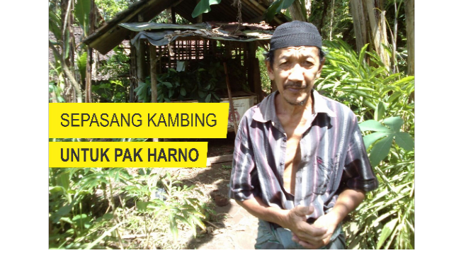 Sepasang Kambing Untuk Pak Harno