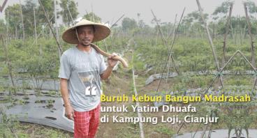 Buruh Kebun Bangun Madrasah untuk Yatim Dhuafa