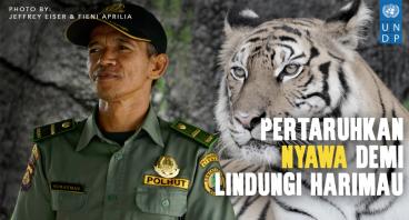 Bantu Bebaskan Harimau Dari Jerat Pemburu