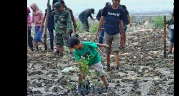 Rehabilitasi Mangrove di Pesisir Pantai Utara Jawa