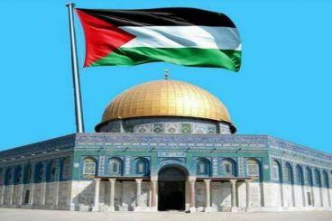 Bantu Anak Yatim Palestina