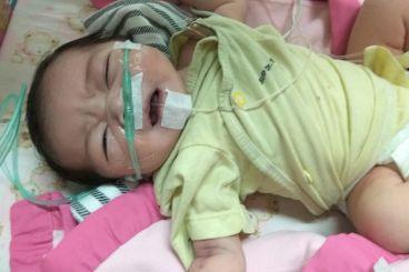 Bantu Bayi Kecil Q untuk Sembuh