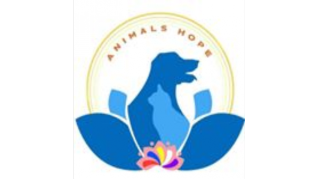 Donasi untuk Animals Hope Shelter.
