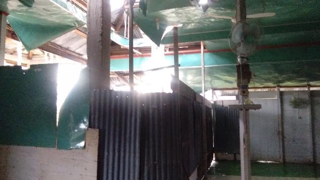 Masjid Kuta Simboling Aceh Singkil butuh Perehapan
