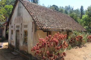 Pembangunan kuti di Vihara Dhamma Sikhi