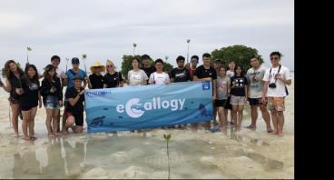 #Mangrovement Pulau Seribu Summer 2018