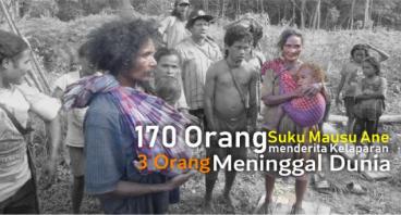 Selamatkan Suku 'Mausu Ane' dari Bencana Kelaparan