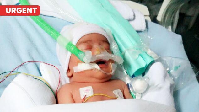 Daffa Pejuang Bayi Prematur