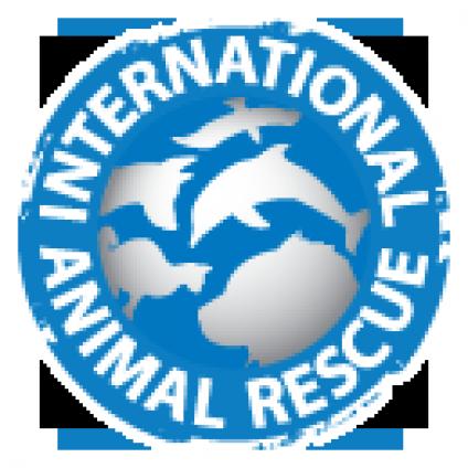 International Animal Rescue Indonesia