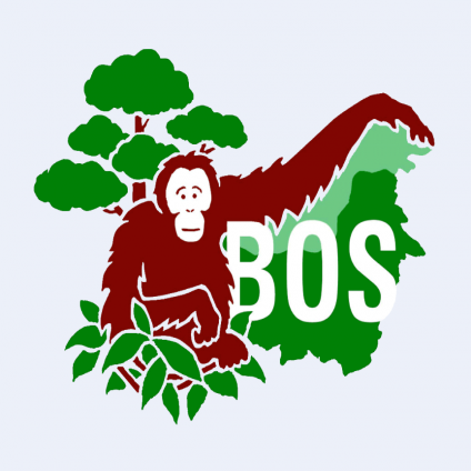 Borneo Orangutan Survival Foundation