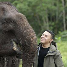 Teman Gajah